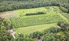 Schartner Farms - Schartner Farm LLC: Corn-Maze Adventure for 2, 4, or 10 with a Free Hayride at Schartner Farms (Up to 55% Off)
