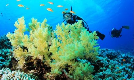 Corso di sub Padi Discover Scuba Diving da 29,90 €. Valido in 3 sedi