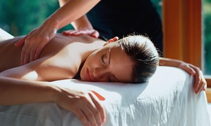 The Massage Center: $53.99 for Massage, Facial, and Hand and Foot Treatment at The Massage Center ($140 Value)