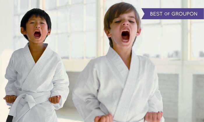 Kids Love Martial Arts - Randolph: 10 or 20 Classes with Initiation and Uniform at Kids Love Martial Arts (Up to 89% Off)