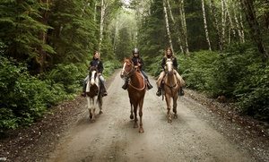 Circle T Ranch: $39 for Horseback-Riding Lesson or Trail Ride Along the River for 2 ($70 value)