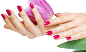 Zenity Spa: Shellac Manicure or Spa Package with Shellac Manicure, Aromatherapy, and Hot Towels at Zenity Spa (Up to 54% Off)