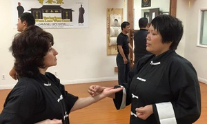 Wing Chun Temple: Four Weeks of Traditional Wing Chun Classes or Two or Four Private Lessons at Wing Chun Temple (Up to 74% Off)