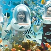 Bali: Sea Walker Tour