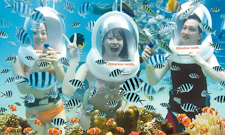 Bali, Nusa Dua: Sea Walker Experience for Up to Four and Return Hotel Transfers with Bali Sun Tours
