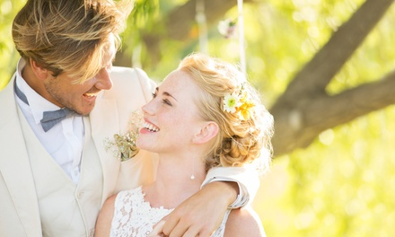 $59 for an Online Wedding-Planner Course with Finance and Business-Management Training from Trendimi ($529 Value)