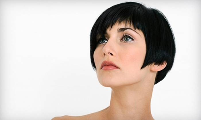 Studio North Salon - Williamsville: $40 for a Haircut, Style, and Basic Color or Highlight with Randi at Studio North Salon in Williamsville (Up to $100 Value)