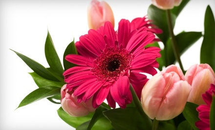 $30 Groupon to Something New Florist - Something New Florist in Canfield