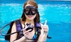 Up to 56% Off Scuba Lessons at GirlDiver