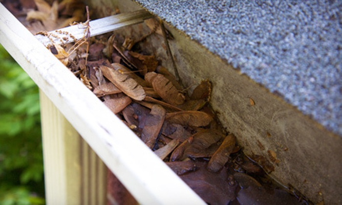 Dirty Works - Raleigh West: 30 or 100 Feet of Gutter Guards with Gutter Cleaning and Roof Cleaning from Dirty Works (Up to 84% Off)