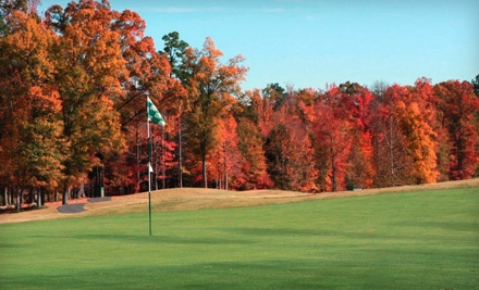 5 Private Lessons (a $300 value) - The Tradition Golf Club in Charlotte