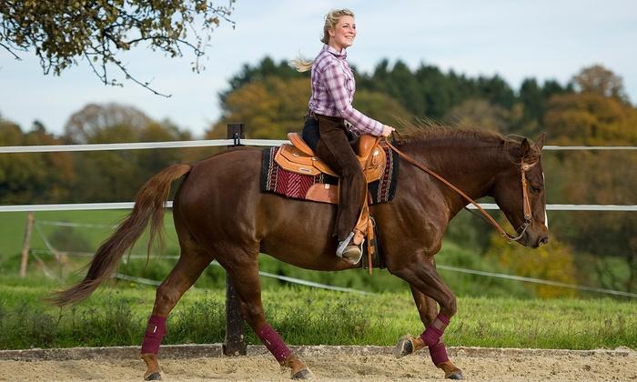 Susanna Farms - Lake Villa: $20 for One 30-Minute Horseback-Riding Lesson at Susanna Farms ($45 Value)