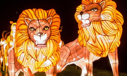The Giant Lanterns of China on 1 - 14 December at Edinburgh Zoo