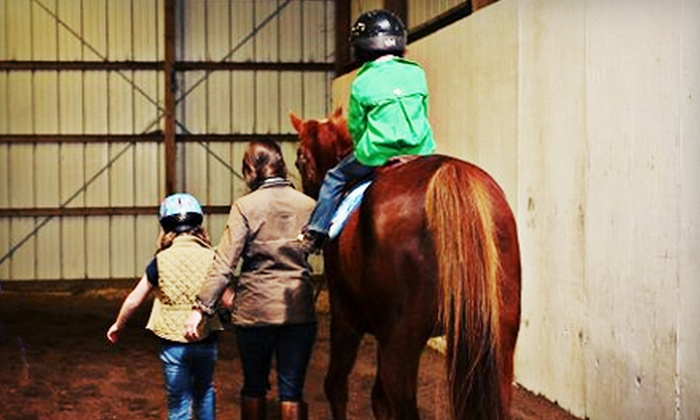 Upstate Equestrian Center - Williamston-Pelzer: Introduction to Horses Class for One or Two Children Ages Three and Up at Upstate Equestrian Center (Half Off)