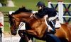 Up to 54% Off Horseback-Riding Lessons in Nicasio