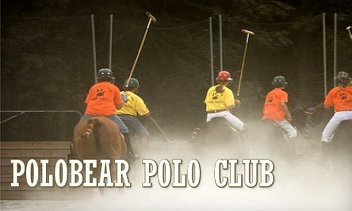Polobear Polo Club - Tyrone: $30 for a One-Hour Introductory Lesson at Polobear Polo Club in Tyrone ($60 Value)