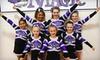 Twigs Kids Gymnastics & Swimming - Stoney Ridge: $87 for Three-Day Cheerleading Camp at Twigs Kids in West Carrollton ($175 Value)