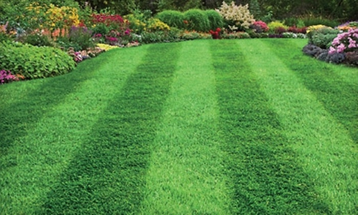 Grassmaster Plus - Davis Square: $149 for a Five-Step Lawn-Care Package from Grassmaster Plus ($300 Value)