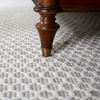 60% Off Whole House Carpet Cleaning