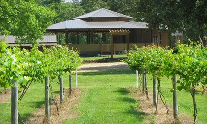 Wills Creek Vineyards - Attalla: $10 for Admission to Music, Camping, and Wine Tasting at Wills Creek Vineyard on Saturday, July 2 in Attalla ($20 Value)