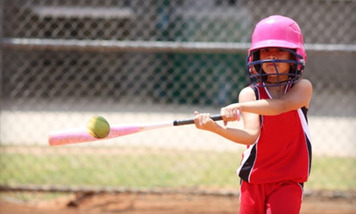 Arena Softball - Industrial Area East: $35 for Family Fun Night for Four at Arena Softball in Roseville (Up to $88 Value)