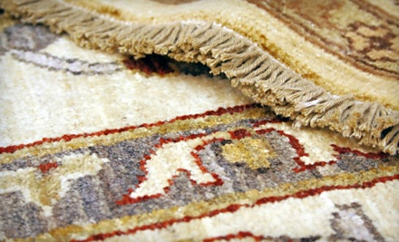 $100 Worth of Area Rugs - Rochester Linoleum & Carpet One in Rochester