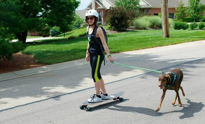 Up to 60% Off Dog-Jogging Sessions from Buddy Boarding