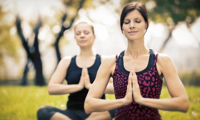 Pranafest - Ashland: One- or Three-Day Yoga-Fest Visit at Pranafest (Up to 54% Off)