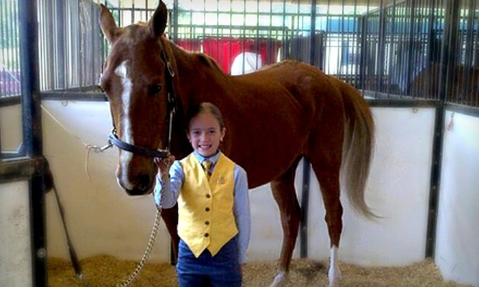 Creek Bend Stables - Catoosa Springs: $69 for Four Beginner Horseback-Riding Lessons at Creek Bend Stables ($140 Value)