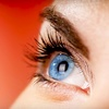Up to 60% Off Eyelash Extensions & Brow Shaping