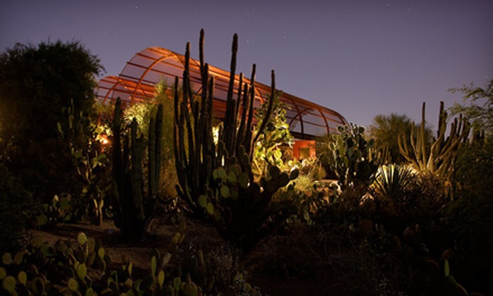 Desert Botanical Garden - Phoenix: $30 for a Garden-Party Outing to the Moonlight Masquerade at Desert Botanical Garden on September 30 (Up to $60 Value)