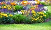 Garden World of Virginia - Sully: $20 for $40 Worth of Plants and Garden Supplies at Garden World of Virginia in Fairfax