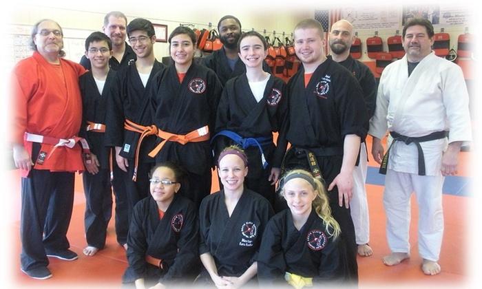 South Elgin Budokan Martial Arts - South Elgin: $25 for $100 Worth of Martial-Arts Lessons — South Elgin Budokan Martial Arts