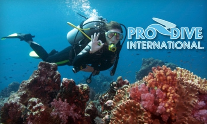 Pro Dive International - Central Beach: $70 Discover Scuba Class and One-Hour Dive with Pro Dive