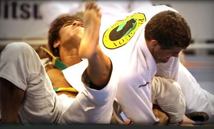 Paragon Jiu Jitsu & Kickboxing - Paragon Jiu Jitsu & Kickboxing in Santa Barbara
