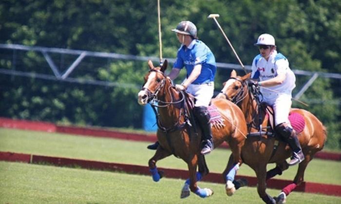 The Polo Organization - Essa: One-Hour Riding Lesson for One or Two or Polo Lesson for Two or Four at The Polo Organization in Essa (Up to 75% Off)