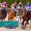Up to 52% Off at Emerald Downs