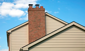 Steam & Green USA: $99 for a Chimney Cleaning and Furnace Inspection from Steam & Green USA ($291 Value)