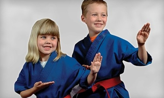 Pro Dojos - Multiple Locations: $ 19 for 10 Martial-Arts Classes at Pro Dojos (Up to $ 150 Value)