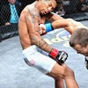 Bellator Fighting Championships – Up to 51% Off Ticket