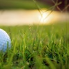 Up to 51% Off at Lemoore Golf Course