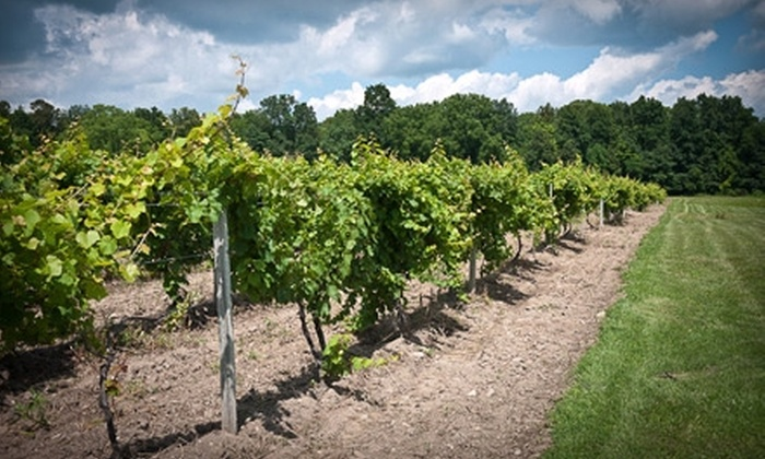 Experience! The Finger Lakes - Ithaca: $55 for Guided Wine Tour of the Seneca Lake Banana Belt with Tastings from Experience! The Finger Lakes (Up to $110 Value)