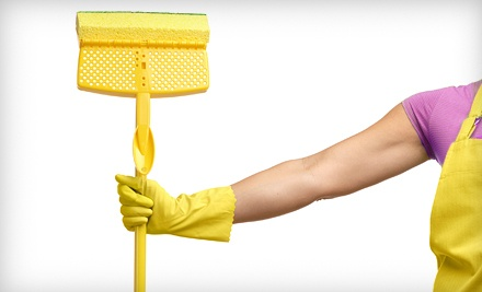 One Two-Hour Cleaning Session (an $80 value) - Cleaning with a Cause in