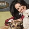 Animal Sense - Multiple Locations: $50 for Three Weeks of Dog Training from AnimalSense