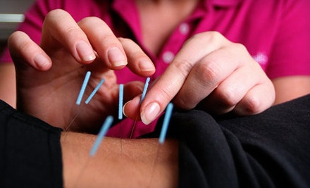 Initial Consultation and 1 Acupuncture Session (a $100 value) - Back in Health Wellness Center in Lutz