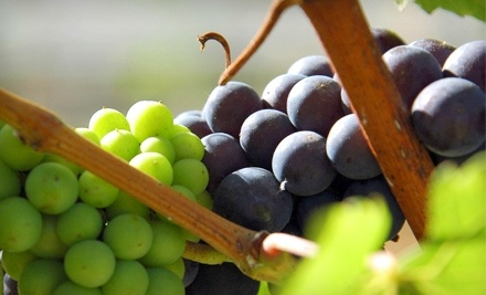 $20 Groupon to Reserve Wines - Reserve Wines in Irving