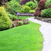 49% Off at Pro Landscaping
