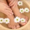 Up to 53% Off Holistic Wellness Treatments