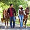 52% Off Horseback Trail Ride at in Huntersville