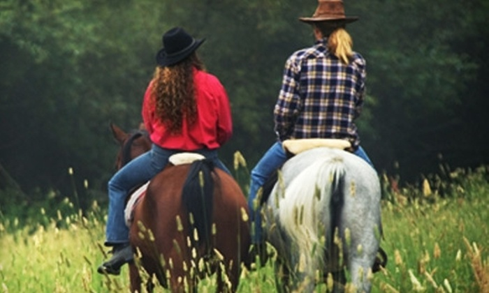 Mead Farm - North Stamford: $75 for a Couple's Evening of Horseback Riding and a Wine and Cheese Tasting at Mead Farm in Stamford ($150 Value)